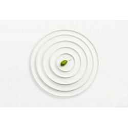 Assiette ronde / plat 32 cm OCO