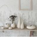 vase nature et couleur